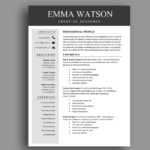 One-Color-Resume-Template