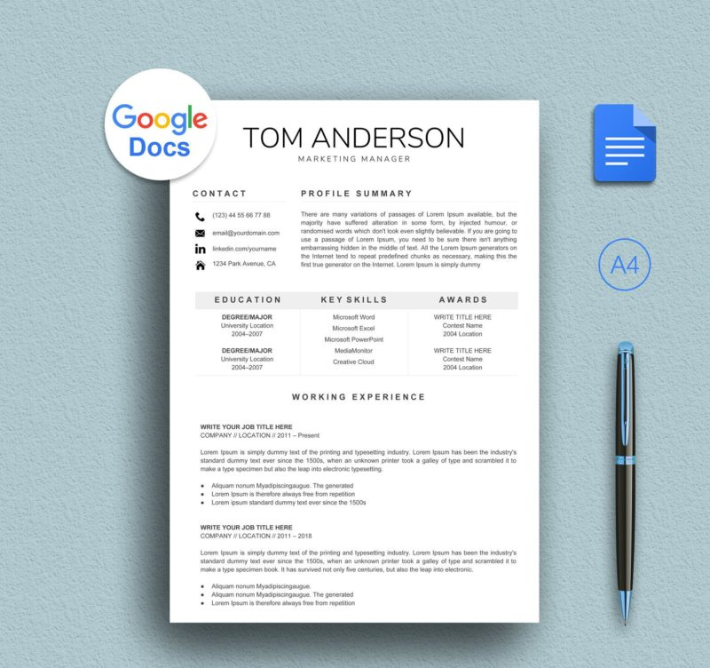 Professional Google Docs Resume Template Instant Download