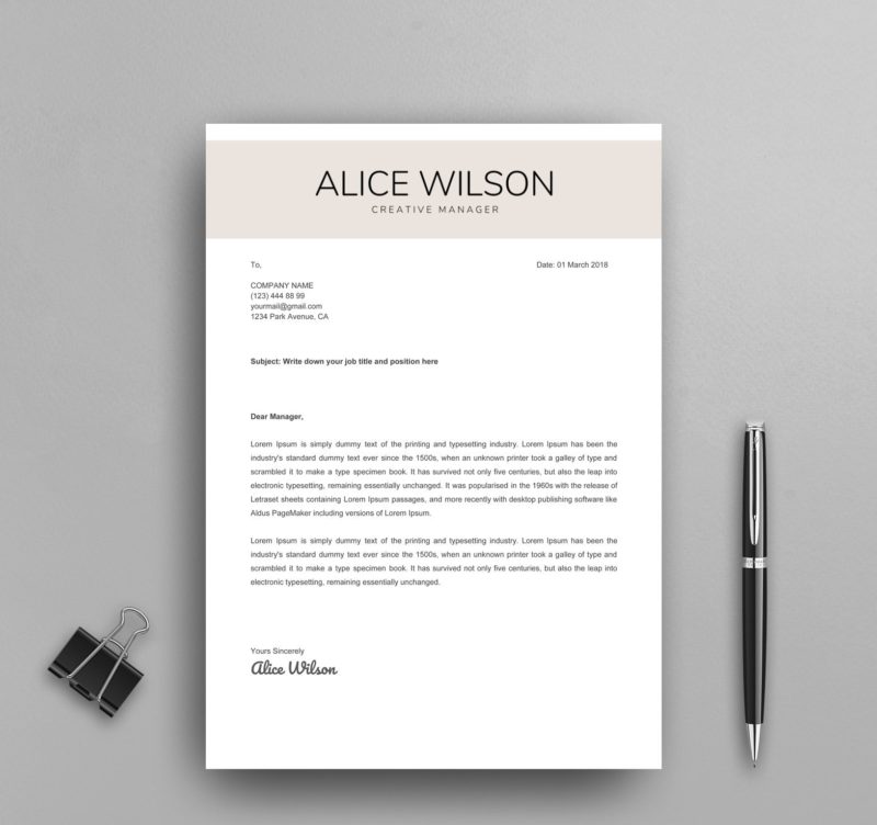 Professional Google Docs Resume Template
